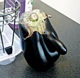 flyby_eggplant.jpg