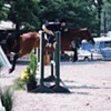 Germantown Horse Show Starts Tuesday