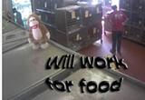 the_monkey_will_work_for_food_jpg-magnum.jpg