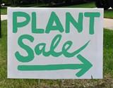 plant_sale.jpg