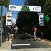 Greenline Opens