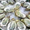 Gulf Seafood: Is It Safe?