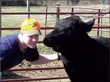 Happier Cows make for healthier cows, according to rancher David Mastin. - COURTESY M4-D RANCH