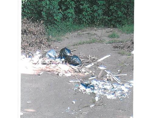 Hidden camera image of illegal dump site.