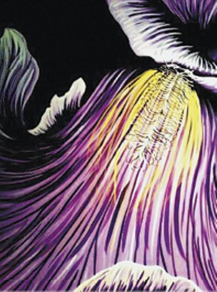 Jana Joplin's Elaborate