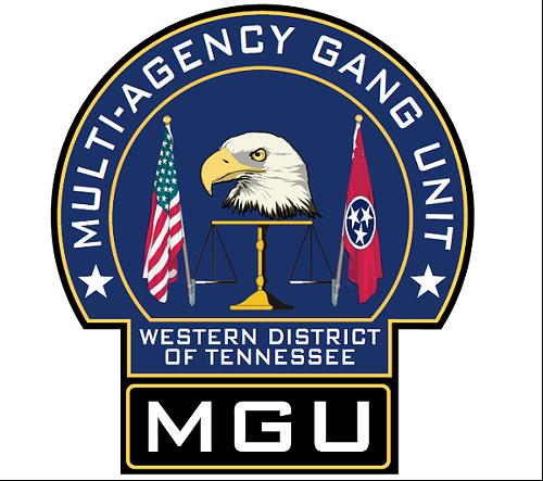 multi-agency_gang_unit.png