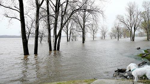 1303859465-2008-04-mississippi-river-flood-1.jpg