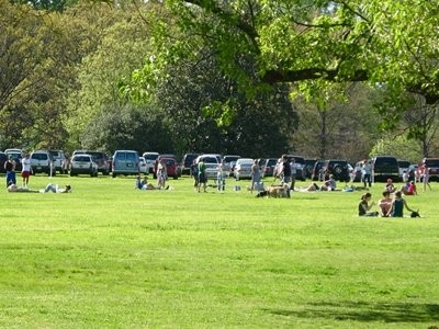 CITIZENS TO PRESERVE OVERTON PARK
