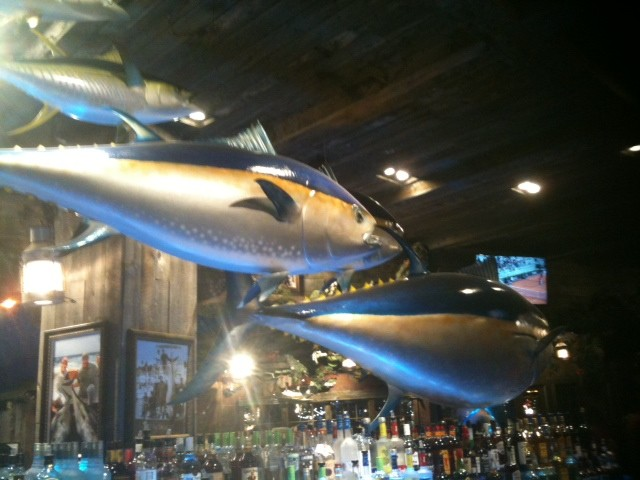 Lunch at uncle buck 39 s fish bowl hungry memphis for Plenty of fish memphis
