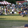 Memphis Italian Festival