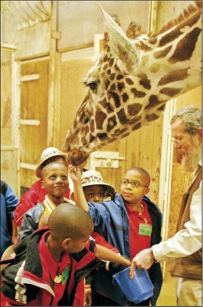 "Memphis Zoo, 1st place: ""Best Family Entertainment"" - JUSTIN FOX BURKS"