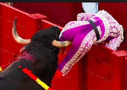 Mother Nature has equipped bulls with a secret weapon scientists call the bootie sensor.