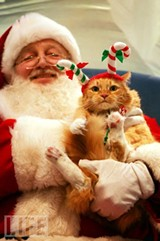 pet-pictures-with-santa-st-catharines-ontario-human-society.jpg