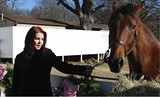 BY BIANCA PHILLIPS - Priscilla Presley shows off Max, one of her recently adopted horses.
