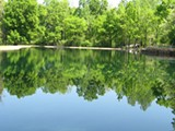 NAOMI VAN TOL, CITIZENS TO PRESERVE OVERTON PARK - Rainbow Lake