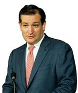 SENATOR TED CRUZ - REUTERS/JONATHAN ERNST