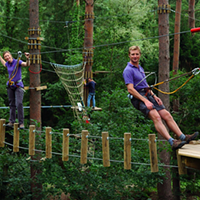 Scene from a Go Ape course