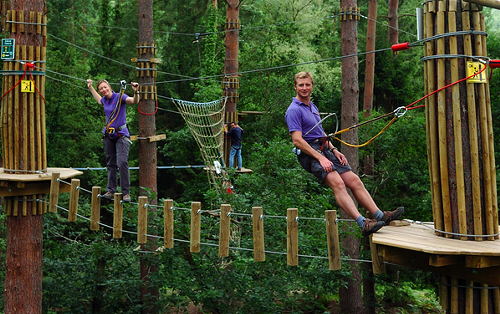Treetop Adventure Course To Open March 21st News Blog