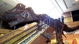 RONDA CLOUD - Stan the T.rex