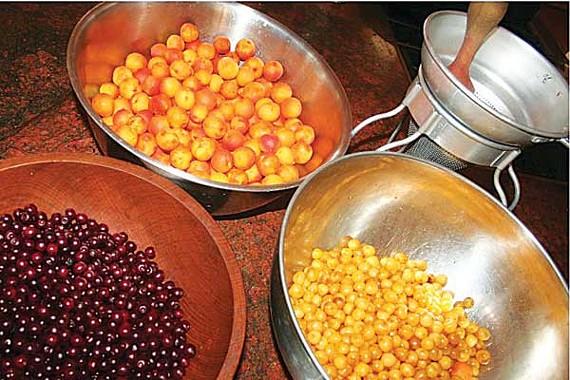 Summer's bounty: ripe for freezing