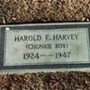 """The Sad Story of Harold Harvey — """"Chunkie Boy"""""""