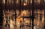 BY MURRAY RISS - The sun illuminates a swamp in this photo from First Shooting Light