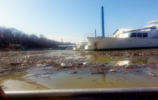Trash floating in McKellar Lake. - ALEXANDRA PUSATERI