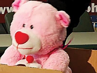 flyonwall_teddybear.jpg
