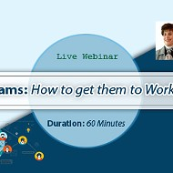Online training on Virtual Teams: How to get them to Work Effectively