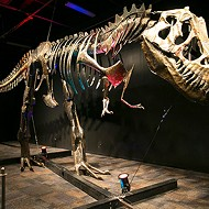 "Pink Palace's ""Dinosaurs in Motion"" Exhibit Opens Jan. 30"