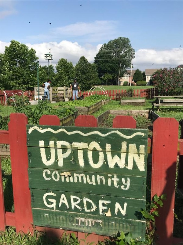 Future site of the Uptown Community Food Forest - IOBY