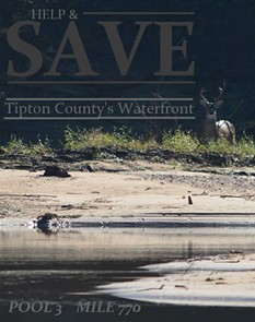 A shot of wildlife at the discharge site of the proposed wastewater pipeline. - JOHN DUDA - FACEBOOK