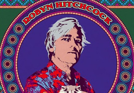 Robyn Hitchcock, Robby Grant