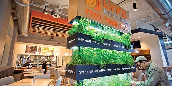 The Chisca LYFE Kitchen has the signature herb wall.