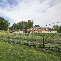 Food Fight: The Battle to Eliminate Memphis' Food Deserts