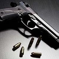 No Guns Allowed: A Look at Local Gun Policies