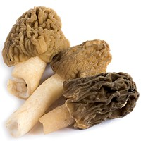 The morel is the story.