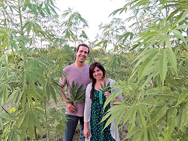 Tennessee hemp farmers. - TENNESSEE HEMP INDUSTRY ASSOCIATION