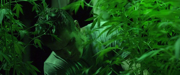 Actor/director Ryon Baxter tends his crops in Green/Is/Gold.