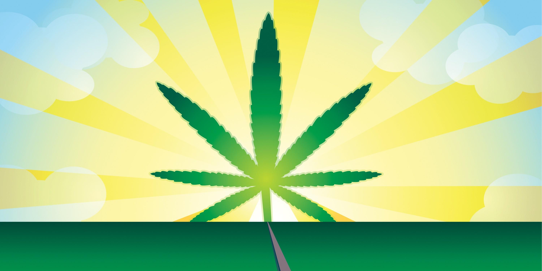 Желтый дым марихуаны песня четыре килограмма марихуаны