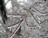 As Temperatures Drop, TVA Asks Residents to Conserve Energy