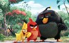 <i>The Angry Birds Movie</i> features these birds, who are angry (especially the red one).