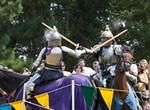 3rd Annual Mid-South Renaissance Faire