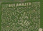 Mid-South Maze