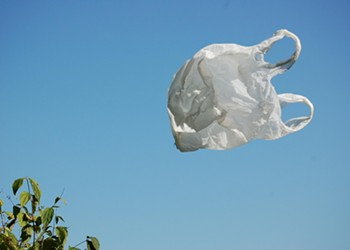 Citing New State Law, Councilman Wary of Plastic Bag Ban