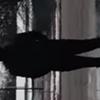 Music Video Monday: Daz Rinko