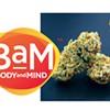 CannaBeat: New West Memphis Dispensaries, Marketing CBD