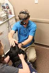 dr_bill_miller_preforms_eye_exam_on_search_rescue_dog.jpg