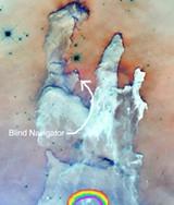 blind_navigator.jpg