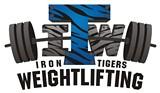 7fb544b9_iron_tigers_logo_trans_background_01.jpg